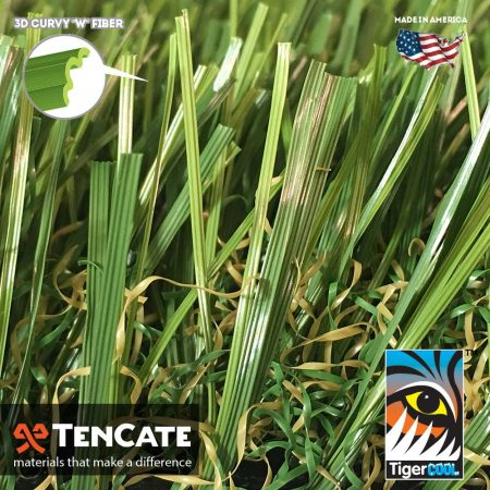 Diamond Light Fescue