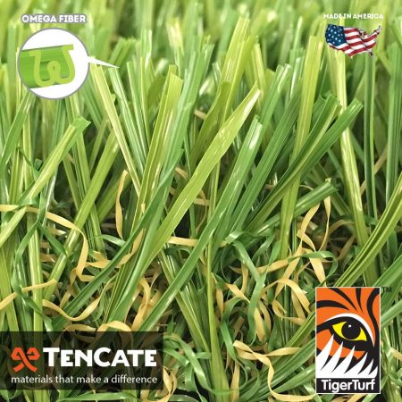 Everglade Fescue Light